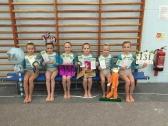 Artistic gymnastics winners
