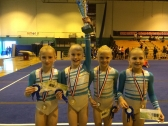 Artistic Gymnasts with medals